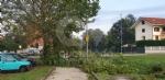 VENARIA-BORGARO-CASELLE-MAPPANO - Maltempo: tetti scoperchiati e alberi abbattuti - immagine 29