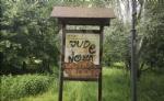 VENARIA - Il degrado di Corona Verde: tra atti vandalici, scarsa manutenzione e costruzioni mai finite - immagine 19