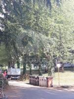 RIVOLI - Dalla piccola manutenzione al restyling della Fontana del Castello: tempo di lavori in città - immagine 1