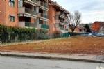 VENARIA - Degrado delle aree private: prime pulizie e nuove lettere dintimazione - FOTO - immagine 1