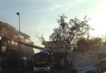 VENARIA - Incendio in un appartamento di via Dante: a fuoco il sacco dellimmondizia - FOTO - immagine 1