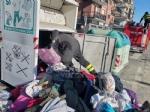 ALPIGNANO - Gattino rimane incastrato nel raccoglitore dei vestiti usati: salvato dai pompieri - immagine 1