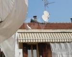 VENARIA - Il cagnolino si fa «un giro» sul tetto: salvato dal volontario di Agriambiente Torino - immagine 1