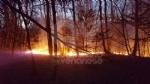 DRUENTO - Incendio boschivo in strada Rive: roghi spenti da pompieri, Aib e Protezione Civile - immagine 1