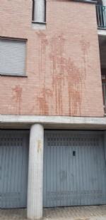 CASELLE-MAPPANO - Vandali in azione la notte di Halloween: torna il raid delle uova - immagine 1