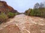 MALTEMPO - Evacuate alcune famiglie a Pianezza. Straripamenti di fiumi e strade chiuse - immagine 1