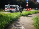 VENARIA - Entra unape nel casco e perde il controllo dello scooter: uomo finisce in ospedale - immagine 1