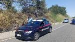 ALPIGNANO - «Mi dava fastidio lerba alta»: piromane appicca un incendio. Arrestato dai carabinieri - immagine 1