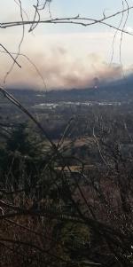 VAL DELLA TORRE - Incendio sui monti tra Brione e Val della Torre - immagine 3
