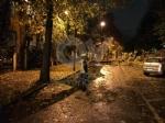 MALTEMPO - Albero e una insegna crollati sulle auto, strade allagate - immagine 10