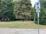 RIVOLI - Nuovo look per le aree verdi comunali: pulizia e taglio dellerba - immagine 1