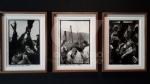 VENARIA - Le guerre immortalate negli scatti di Pellegrin nella mostra «UnAntologia» alla Reggia - FOTO - immagine 1