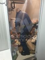 VENARIA - Cibo mal conservato e tasse non pagate: chiuso un negozio in via Mensa - immagine 1