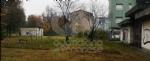 VENARIA - Al via il taglio dellerba nel quartiere di Altessano - immagine 1