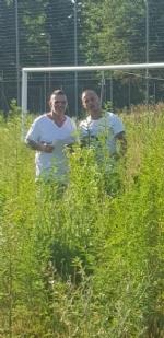 VENARIA - Muri pericolanti ed erba alta: degrado nel campo «naturale» del Don Mosso - immagine 1
