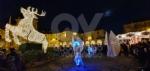 VENARIA - Il grande cervo in piazza Annunziata è stato illuminato: il Natale è iniziato in città - immagine 1