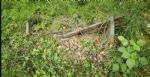 VENARIA - Il degrado di Corona Verde: tra atti vandalici, scarsa manutenzione e costruzioni mai finite - immagine 1