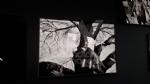 VENARIA - Le guerre immortalate negli scatti di Pellegrin nella mostra «UnAntologia» alla Reggia - FOTO - immagine 23