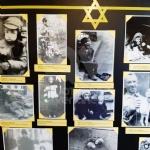 VENARIA - Il «Giorno della Memoria»: la Reale ha ricordato la tragedia dellOlocausto - FOTO - immagine 25