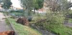 VENARIA-BORGARO-CASELLE-MAPPANO - Maltempo: tetti scoperchiati e alberi abbattuti - immagine 37