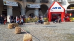 VENARIA - Va alla Colomba la seconda edizione del «Palio dei Borghi» con i kart - immagine 29