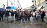 VENARIA - «Festa delle Rose»: un successo a metà per colpa della pioggia - immagine 28