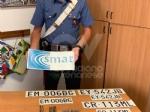 CRONACA - Nella lavatrice il «kit» per truffare gli anziani: targhe e loghi contraffatti di Smat e Regione - immagine 2