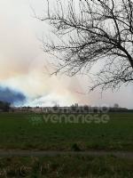 VAL DELLA TORRE - Incendio boschivo in Borgata Buffa: il piromane è tornato in azione? - immagine 2