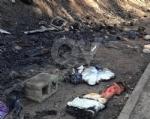 RIVOLI-GRUGLIASCO - Idioti in azione: bruciato il «villaggio felino» e alcuni alberi - immagine 2