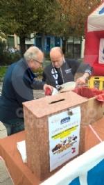 VENARIA - Successo per la «Castagnata» dellAvis in piazza Pettiti - immagine 2