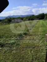 DRUENTO - Il Suv passa sui terreni agricoli di Strada Cortese e Strada Pasturanti, rovinandoli - immagine 2