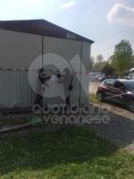 VENARIA-CASELLE - Discariche, bar e officine abusive: i carabinieri denunciano nove persone - immagine 2