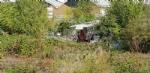 COLLEGNO - Sgombero area ex Mandelli. Casciano: «Per sicurezza e per tutelare le condizioni igienico-sanitarie» - immagine 2