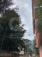 RIVOLI - Nuova illuminazione pubblica nelle vie Vecco, Tenda e Bonadonna - immagine 2