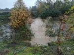 MALTEMPO - Rimane lallerta rossa. Monitorati fiumi, torrenti e guadi: preoccupano Ceronda e Stura - immagine 2