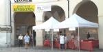 VENARIA - Va alla San Francesco ledizione 2018 dei «Giochi senza frontiere»: LE FOTO - immagine 2
