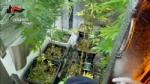 VENARIA - Due donne denunciate per possesso di droga: in manette il loro fornitore - immagine 2