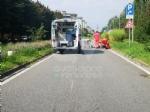 VENARIA - Entra unape nel casco e perde il controllo dello scooter: uomo finisce in ospedale - immagine 2