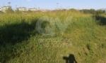 VENARIA - La segnalazione: «Ecco il degrado di Corona Verde» - immagine 2