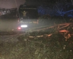 MALTEMPO - Furgone colpito da un albero in tangenziale: donna ferita. Forti danni in diverse cittadine - immagine 2