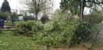 VENARIA-BORGARO-CASELLE-MAPPANO - Maltempo: tetti scoperchiati e alberi abbattuti - immagine 12
