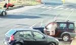 BORGARO-CASELLE - Rubano le borsette alle signore: due marocchini arrestati dai carabinieri - immagine 2