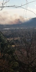 VAL DELLA TORRE - Incendio sui monti tra Brione e Val della Torre - immagine 4