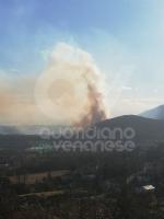 VAL DELLA TORRE - Incendio sui monti tra Brione e Val della Torre - immagine 2