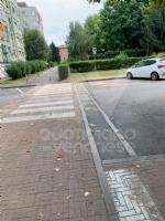 RIVOLI - Nuovo look per le aree verdi comunali: pulizia e taglio dellerba - immagine 2