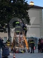 VENARIA - Vigili del fuoco per un pomeriggio: tanti bambini in piazza Vittorio con «Pompieropoli» - immagine 2