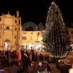 VENARIA - Con lalbero acceso in piazza Annunziata prende il via il Natale: gli appuntamenti del week-end - immagine 2