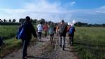 VENARIA - Trecentocinquanta appassionati per il raduno di Nordic Walking - LE FOTO - immagine 2