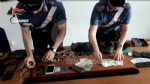 CRONACA - I furti in Canavese, larresto a Venaria: in manette la banda che rubava nelle case - immagine 2