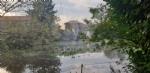 VENARIA-BORGARO-CASELLE-MAPPANO - Maltempo: tetti scoperchiati e alberi abbattuti - immagine 44